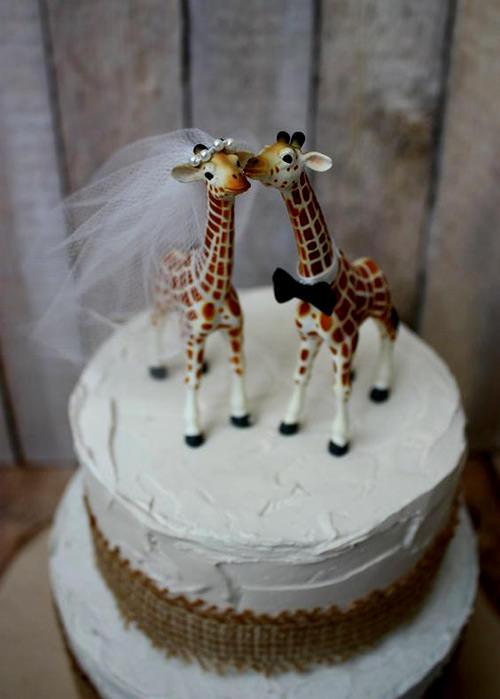 Que amor a girafinha beijando a outra
